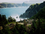 SEA MIST AT TWILLINGATE-THE FACE OF NEWFOUNDLAND AND ONE OF MY FAVORITE PICTURES OF THE ISLAND