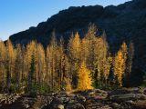 Ingalls Lake - 10.21.2006