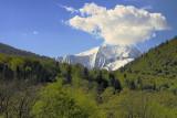 Gyzerpil. Caucasus