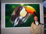 Bill Attacked by Toucan