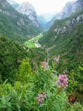 Stalheim Canyon