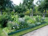 Vegetable Garden with Flowers for Aesthetics