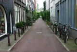 Wandering through town