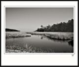 New Hampshire Marsh-2