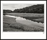 New Hampshire Marsh-3