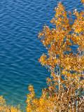 Blue and Gold June Lake Loop, California  October 2006
