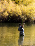 Hope  June Lake Loop, California October 2006