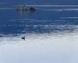 Late Day Blues Mono Lake, California, October 2006