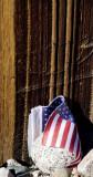 Patriotism Manzanar Historical Monument, California, October 2006