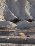 20 Mule Team Morning Death Valley, California  February 2007