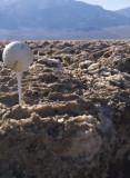 Devil's Golf Course Death Valley, California  February 2007