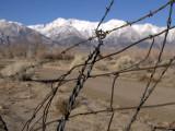 GALLERY :: Revisiting Manzanar, February, 2007