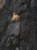 Endurance Kern River Canyon, California, February 2007