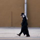 Morning Stroll Bakersfield, California February 2007