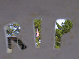 Death of... Mare Island, Vallejo, California, 2007