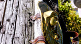 Madonna of the Telephone Pole Berkeley, California, 2007