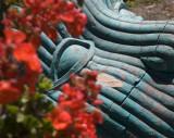 Color Di Rosa Preserve, Napa County, California, June 2007