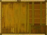 chip20_002.jpg