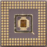chip31_006.jpg