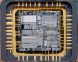 chip39_011.jpg