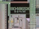 chip12_007.jpg macro 24:1