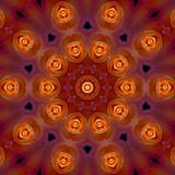 Rose orange 1.jpg