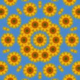 Sunflower2 3.jpg