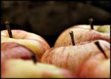 CRW_1804-apples1.jpg