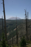 Mt. St. Helens (IMG_7019AW.jpg)