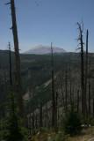 Mt. St. Helens (IMG_7020AX.jpg)