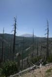 Mt. St. Helens (IMG_7029BA.jpg)