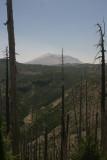 Mt. St. Helens (IMG_7055BL.jpg)