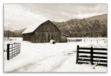 03.04.07 Winter Barn