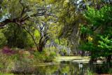 Airlie Lake