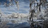 Airlie Lake Infrared 1