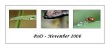 PAD Novembre 2006
