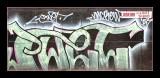 11-02-2007 d70- 001.jpg