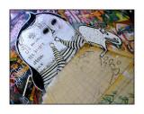 06-04-2007 d70 - 064.jpg