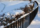 Curves On The Snow