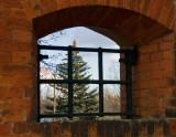 Citadel Window