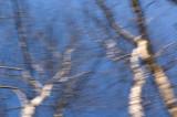 Blue Sky Rhapsody