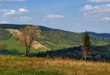 Beskid Niski Landscape