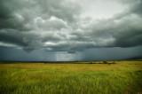 Masai Mara Rainstorm