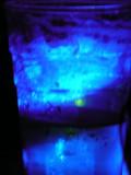 DJ's drink!