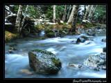 creek04_6707.jpg