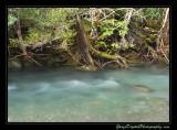 creek06_6721.jpg