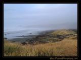 beach03_6906.jpg