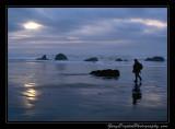 beach08_6931.jpg