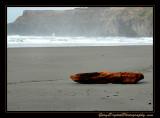 beach04_0074.jpg