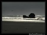 beach07_0115.jpg